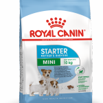 rc mini starter